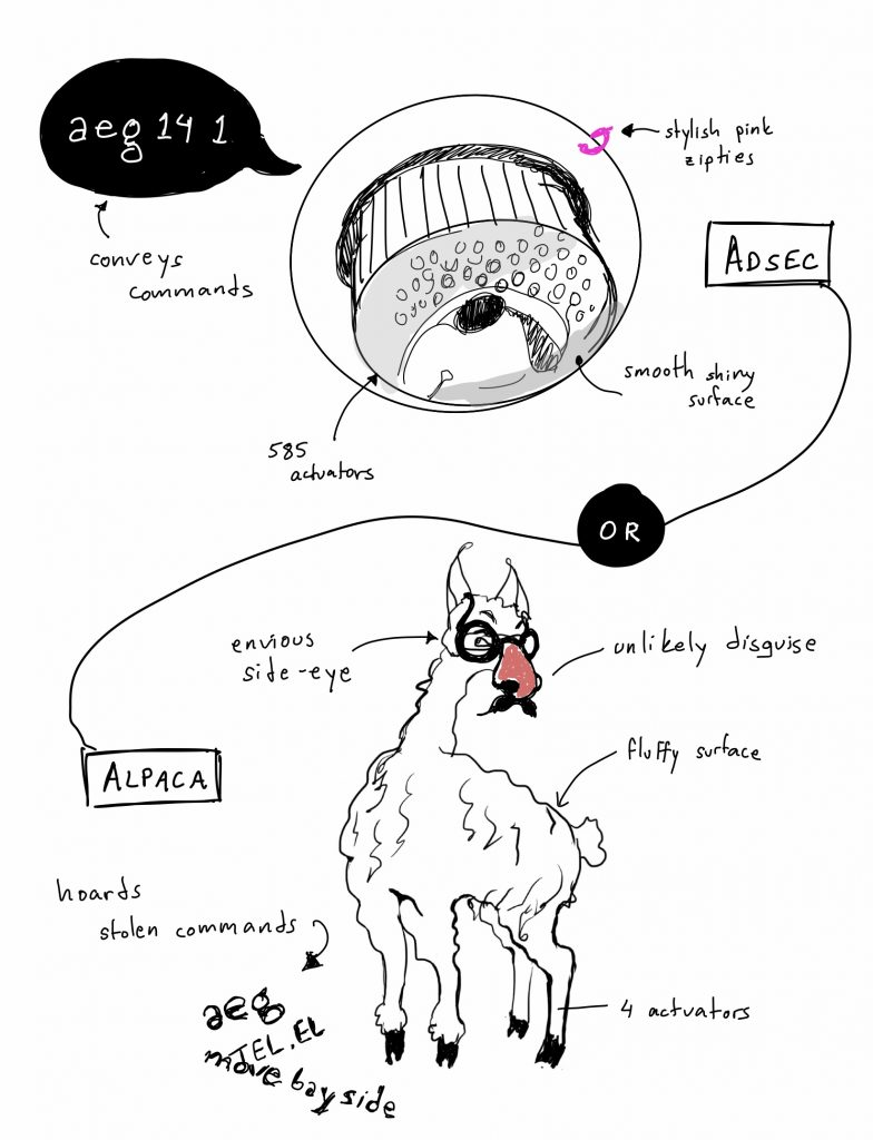 MagAO-C 2019B Day 7: The Alpaca Saga